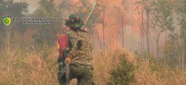 Api Berkobar di Kota Palangka Raya